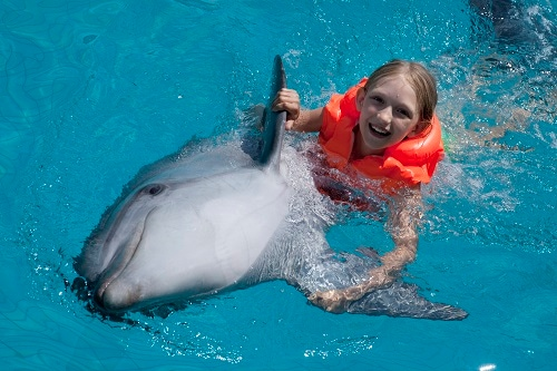 little girl holding on to a dolphin's fins in the waters of the bahamas