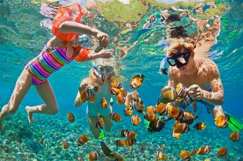 2 teenagers and a little girl snorkeling around fish in a bahamas beach