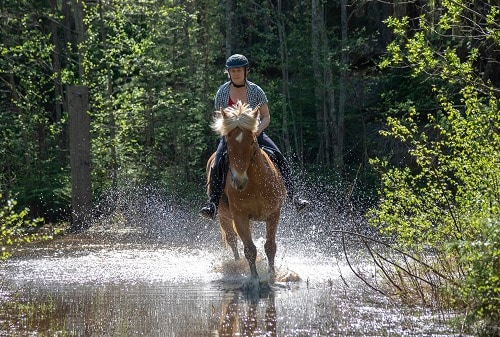 woman horseback riding in the forest of san juan