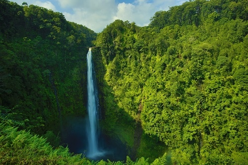 amazing view of the akaka waterfall in Hawaii during cruise ship tour