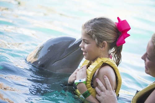 dolphin kissing little girl in cozumel