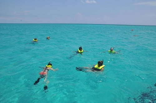group of people snorkeling in half moon cay