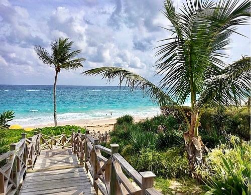 wooden bridge crossing over the lush landscape of bermuda, towards the beach