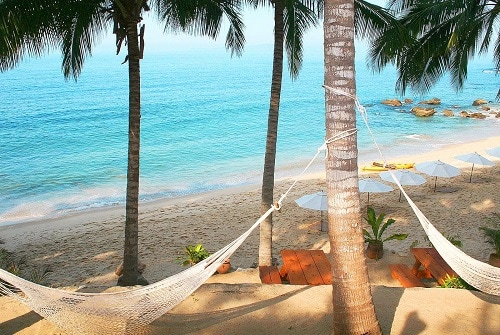 several hammocks tied on palm trees in a hidden beach in the mexican riviera