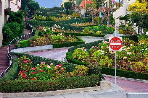 ground view of lombard street in san francisco