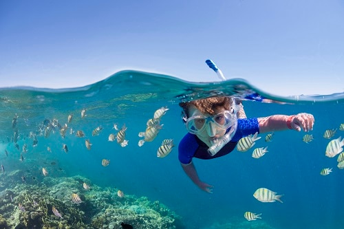 boy snorkeling near a reef in bermuda