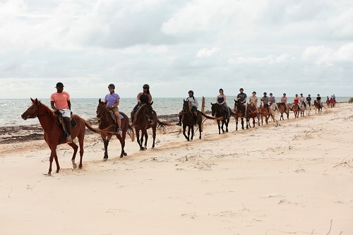 group of people on a horseback riding shore excursion in grand turk