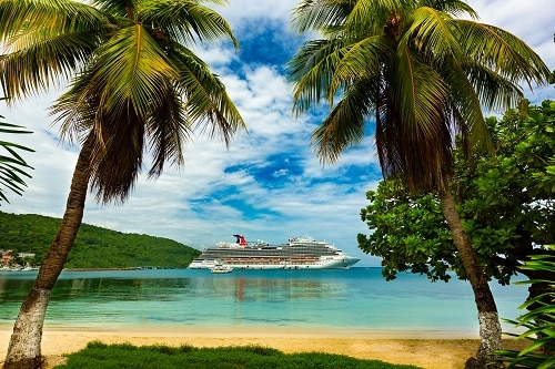 view of a carnival ship between two palm trees in ocho rios