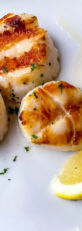 broiled sea scallop and truffled risotto with citrus gremolata