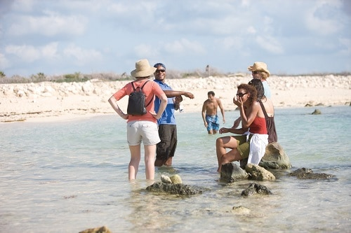 group of people on a shore excursion on the beach