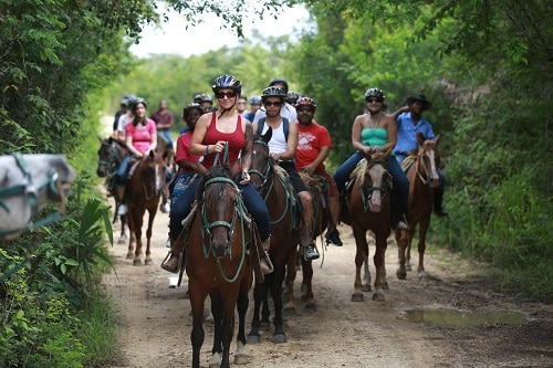 a group of people on a horseback riding trail into a forest