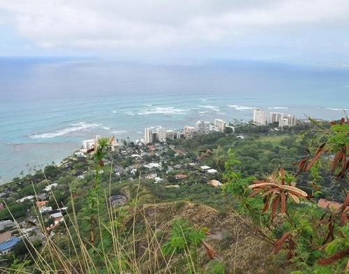 a panoramic beach view from the diamond head volcano
