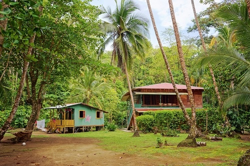 houses in the jungles of limon
