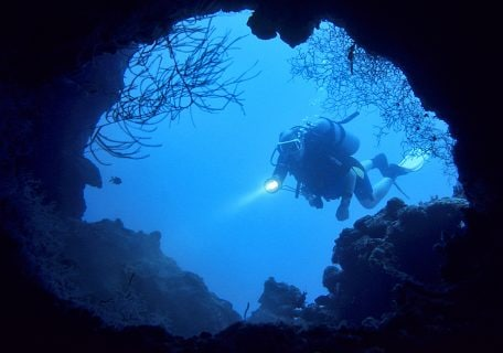 Tropical scuba diving after dark