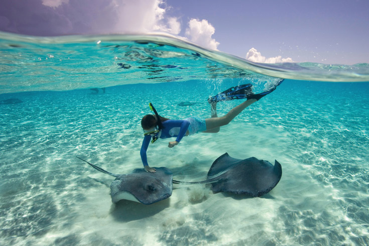 Southern stingrays reside in the warm, calm waters of Stingray Cove. You can spot them on kayaking or glass-bottom-boat rides through the clear water, but the biggest thrill is don a snorkel and mask for a guided stingray swim and touch their velvety wings as they sail by.