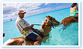 Half Moon Cay Horse Swim Ride