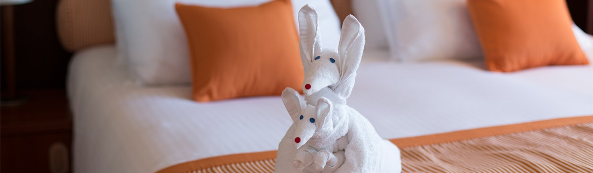 towel animal in stateroom