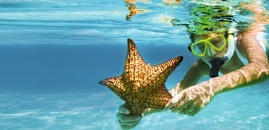 SNORKELING UNDERWATER WITH A STARFISH IN THEIR HAND