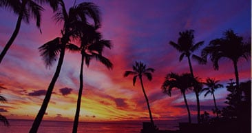 view the beautiful sunsets in hawaii