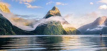 Cruise to New Zealand.