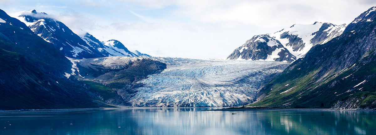 cruise through the tranquil waters of glacier bay