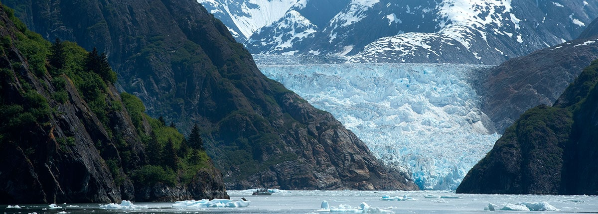 cruise around alaskan mountains of tracy arm fjord