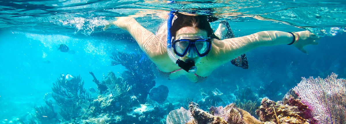 girl snorkeling during the bermuda snorkel adventure