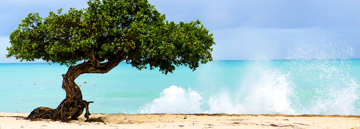 Cruise To Aruba Aruba Amp Caribbean Vacations Carnival