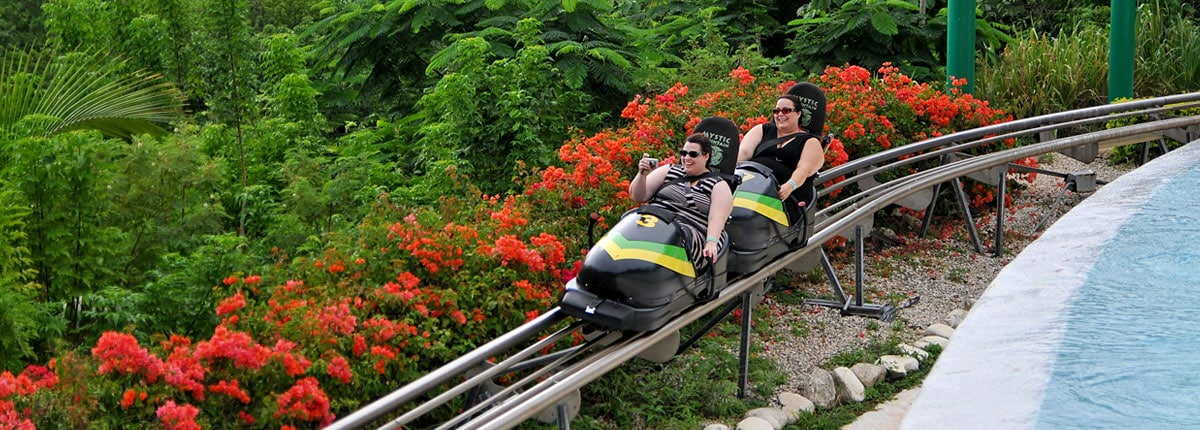 take a wild ride on a jamacian bobsled
