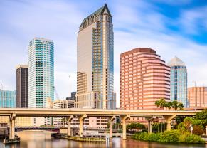 enjoy the view of the tampa skyline
