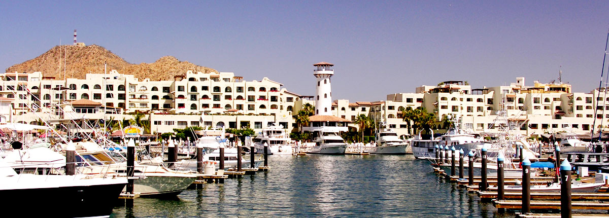 enjoy the sights of the marina in cabo san lucas