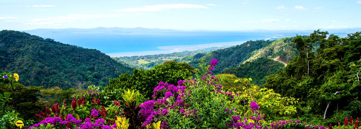 beautiful hilltop view of the coast of puntarenas