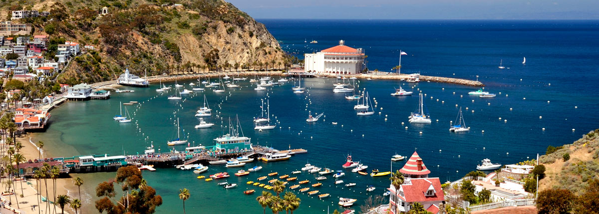 harbor view of avalon city on catalina island