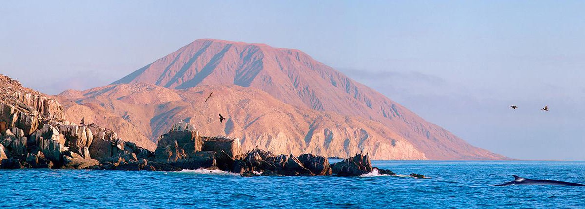 Baja Mexico Cruises Mexican Cruise Packages Carnival Cruise Line