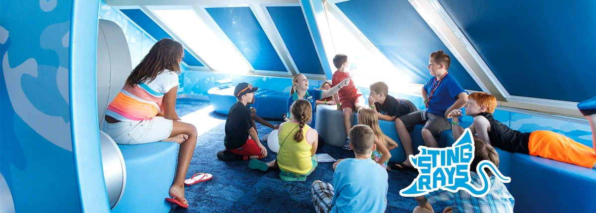 children listening to storys at camp ocean, camp ocean stingrays logo